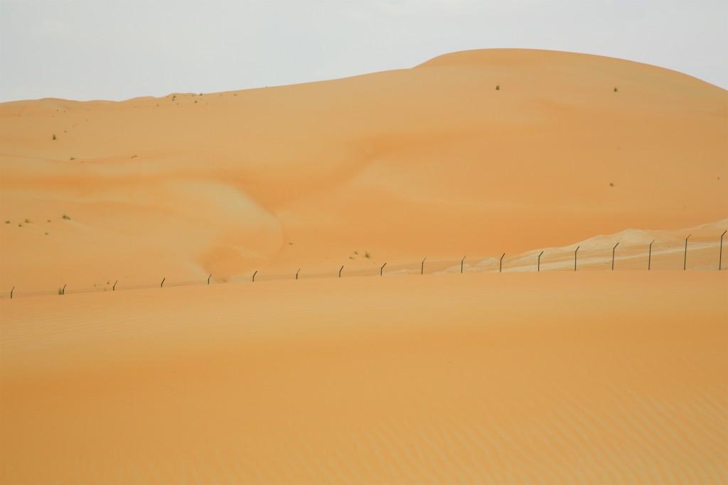 Douglas_Wüste_vorher