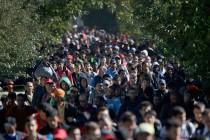 """Jeder zweite """"minderjährige Flüchtling"""" (UMF) ist älter als 18 Jahre"""