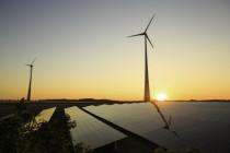 Ökoenergieanlagen: Betreiber kassieren auch in der Krise