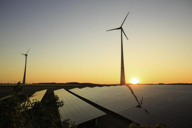 Beispiel Umwelt: Staatliche Regulierung mit mehr Schaden als Nutzen