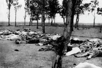 Der Völkermord an den Armeniern war der Anfang