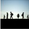 Medien-Studie zum Migrationspakt: Wer dazu gelernt hat, wer weiter manipuliert