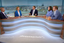 Die Grünen: Ein Medienhype