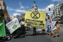 Das Interesse der Klimaretter am Klima ist taktisch