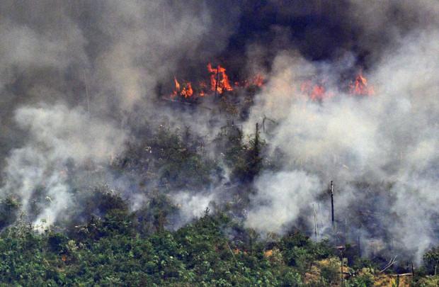 NASA: Brände im Amazonas-Becken im 15-Jahresdurchschnitt