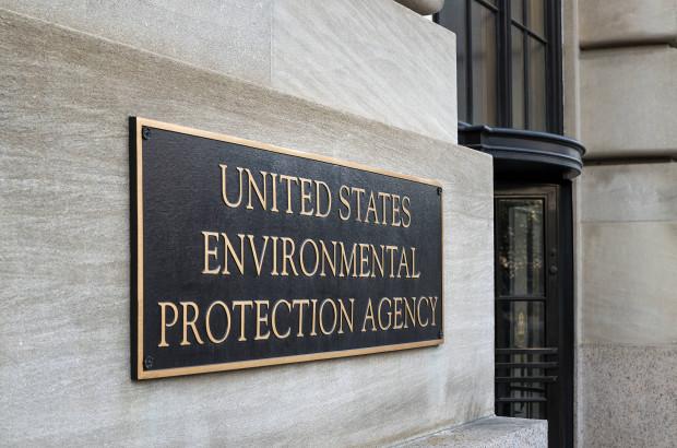 Bayer/Monsanto: Freispruch von der Umweltbehörde für Glyphosat