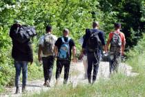 Balkanroute 2019 – Alle Wege führen nach Deutschland?