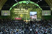 Die grünen Verfassungsschützer