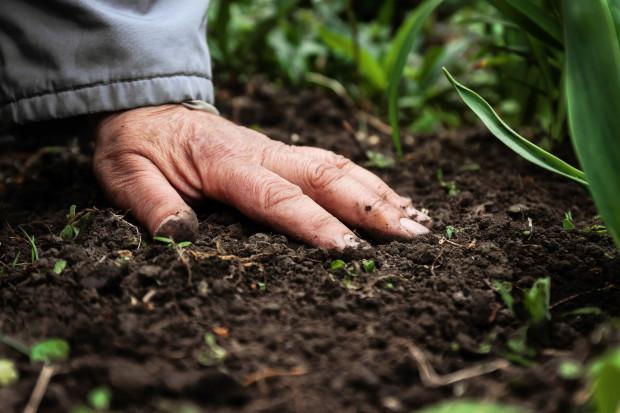 Bauernproteste: Zerstören die Bauern das Land – oder schaffen sie Kulturlandschaft?