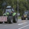 Niederlande: erneute Bauernproteste