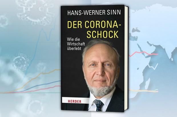 Beitragsbild_Sinn_Der-Corona-Schock_Vari