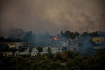 """""""Eine koordinierte Aktion mit dem Ziel, dieses ganze Camp in Brand zu setzen"""""""