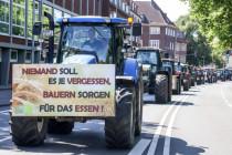 Die EU-Agrarpolitik setzt die heimische Lebensmittelproduktion aufs Spiel
