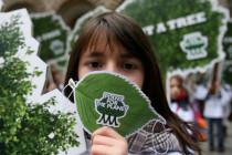 Wie die Fridays for Future-Hintermänner die Klimagläubigen hinter die Fichte führen