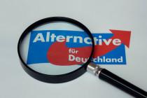 """Beobachtung der AfD: Vermutlich """"abgekartetes Spiel zwischen Verfassungsschutz und Medien"""""""