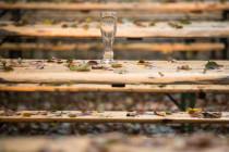 Brauereien am Abgrund: Jedem vierten Betrieb droht die Insolvenz
