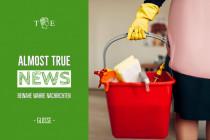 Grüne wollen staatliche Gutscheine für Putzhilfen